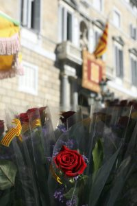 Roses on a stall outside the Palau de la Generalitat, Barcelona. Picture courtesy Generalitat de Catalunya